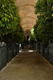 Orangery на Версаль Стоковое Фото