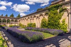 Orangery, суд Witley, Вустершир, Англия Стоковые Изображения RF