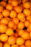 Oranges. Brightly coloured oranges, a fresh and juicy healthy snack Royalty Free Stock Image
