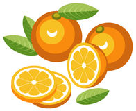 Oranges. Illustration of oranges with slices Royalty Free Stock Images