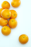 Oranges. In neat arrangement on clean background Stock Images