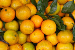 Oranges. This is a shot of some fresh oranges found at a fruit market in the small town of Yangshuo, China Stock Images