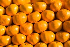 Oranges. Put close together in a group Stock Photos