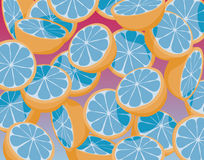 Oranges. Editable  illustration of falling sliced blue oranges Stock Image