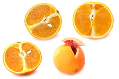 Oranges. Fruit citrus isolated on white background close-up royalty free stock photography