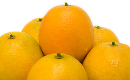 Oranges. Good looking and fresh oranges Royalty Free Stock Photography