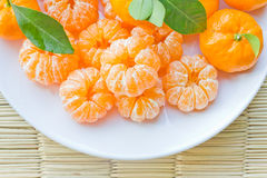 Oranges. Lots of ready to eat oranges royalty free illustration