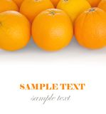 Oranges. Isolated on white background. With sample text royalty free stock photo