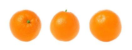 Oranges. Three whole oranges isolated on white background Stock Image