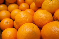 Oranges. Freshly picked oranges ready to be squeezed stock photo