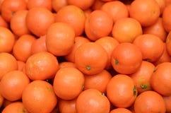 Free Oranges Royalty Free Stock Image - 25884146