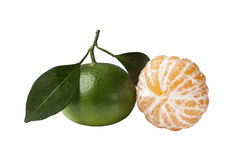 Oranges. Green oranges on a white background Stock Photos