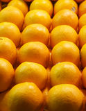 Oranges. Many juicy oranges in a local farmers market royalty free stock photos