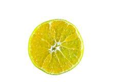 Oranges. Closeup isolated on background stock photography