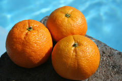 Oranges. Fresh oranges Stock Photos