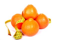 Oranges. Stock Photography