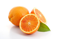 Free Oranges Stock Photography - 4829742