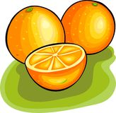 Oranges. Stained glass style oranges royalty free illustration