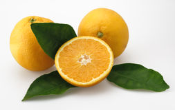 Oranges. Three isolated green cut half leef Royalty Free Stock Images