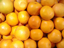 Oranges. Closeup of a group of oranges on display in a grocery store Stock Image