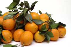 Oranges. It is oranges with leaves, isolated Stock Image
