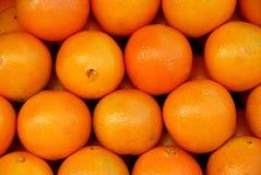 Free Oranges Royalty Free Stock Image - 784996