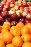 Oranges and apples in the sun Royalty Free Stock Photo