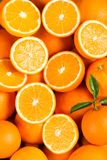 Oranges as the background. Close up. Stock Photos