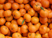Oranges on background. Royalty Free Stock Images