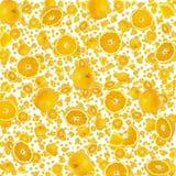 Oranges background (on white) Royalty Free Stock Image