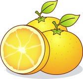 Oranges, Bahia Orange Royalty Free Stock Images