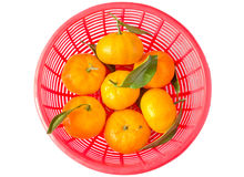 Oranges on basket Royalty Free Stock Photos