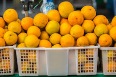 Oranges in the basket. Photo of some oranges in the basket royalty free stock image