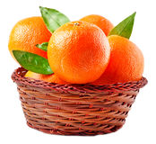 Oranges in basket on a white background Royalty Free Stock Image