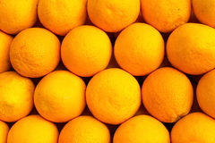 The oranges are beautifully and evenly laid out in lines under the sun. The beautiful background. Bright oranges photo Stock Photography
