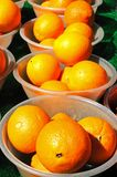 Oranges in bowls. Stock Photography