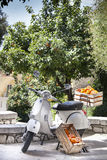 Oranges in the box. Ancient Italian motorcycle. Green orange trees in the background. An old white Italian bike is parked on the street. On it and beside some royalty free stock photo