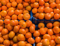 Oranges in a box at market Stock Image