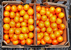 Oranges boxes Stock Photos
