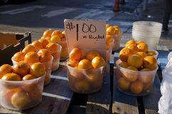 Oranges. Buckets of oranges for sale at the outdoor market for one dollar Stock Photo