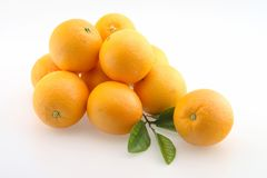 Oranges in Bunch. Fresh Oranges stacked in a bunch and Pile Isolated royalty free stock photos