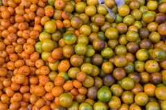 Oranges bunch in market Royalty Free Stock Photography