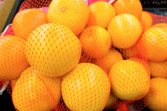 Oranges bundled in net bags at a grocery store Royalty Free Stock Images