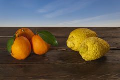 Oranges and cedars. Cedars and oranges with blue sky Stock Images
