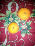 Oranges Royalty Free Stock Photography
