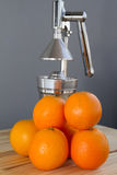 Oranges and chrome citrus juicer Royalty Free Stock Photos