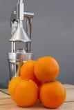 Oranges and chrome citrus juicer Stock Images