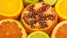 Oranges, citrons, pamplemousse et grenade frais Photographie stock