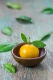 Oranges (Citrus Japonica Thunb) Stock Photos