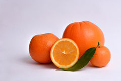 Oranges and clementine with leaves cut in half Royalty Free Stock Photos